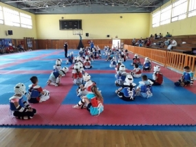 Ο Α.Π.Σ. Ικμάδα στο 3rd Summer Fighting Kyorugi - Technical Poomsae Camp In Town